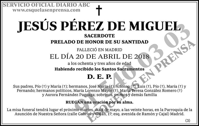 Jesús Pérez de Miguel